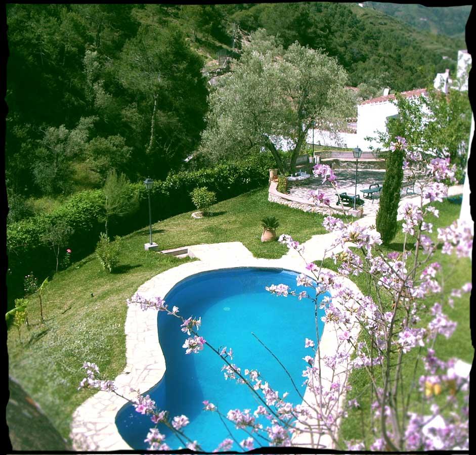 Y la piscina el acebuchal - Piscinas en el campo ...