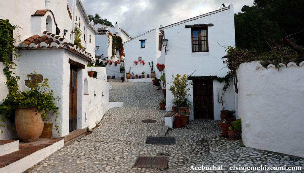 Fotos el acebuchal - Las mejores casas rurales de andalucia ...